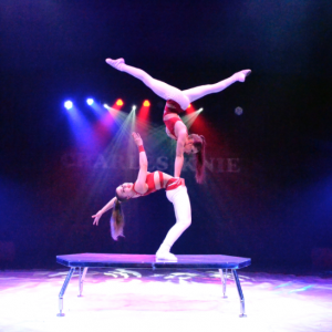 The Circus Arts Conservatory to Offer Free Live International Virtual Show
