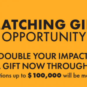 Sarasota Orchestra Matching Gift Challenge Has Doubled